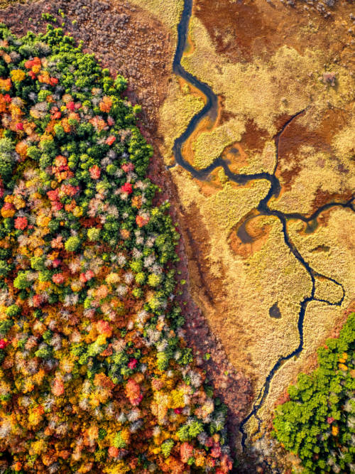 Autumn aerial view wallpaper