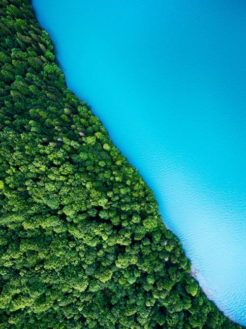 Blue lake and green shore wallpaper