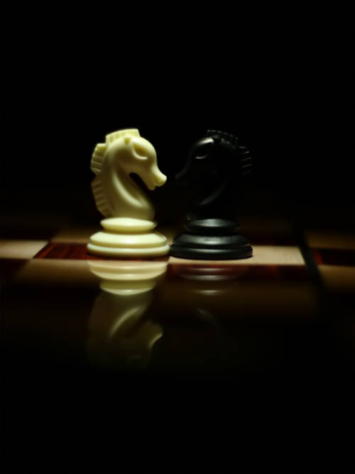 Chess horses faced wallpaper