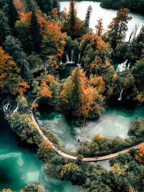Fondo de pantalla de Lago del bosque