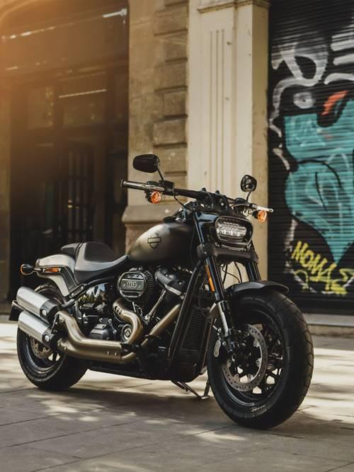 Harley-Davidson auf der Straße wallpaper