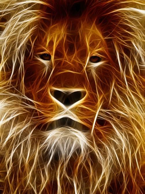 Papel de parede de Desenho de leão