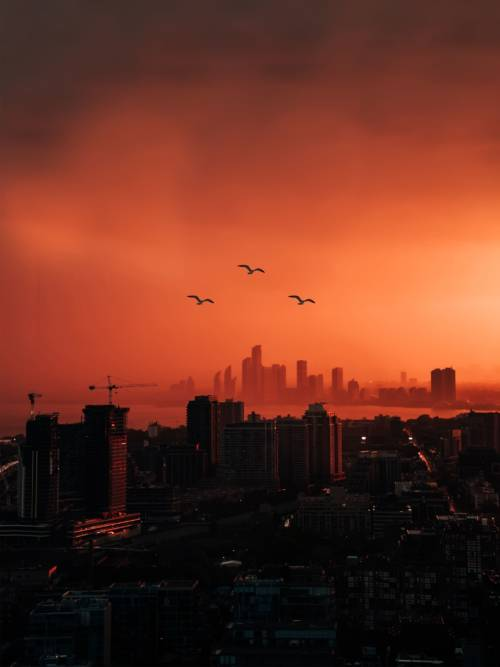 Orange Skyline der Stadt Wallpaper für Handys und Tablets
