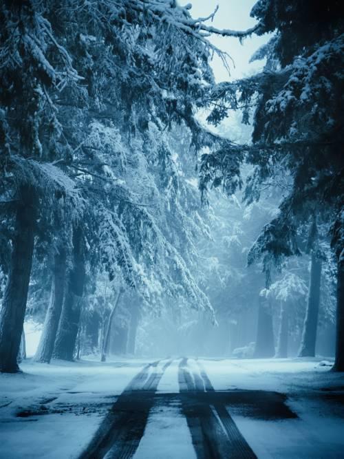 Fondo de pantalla de Carretera nevada
