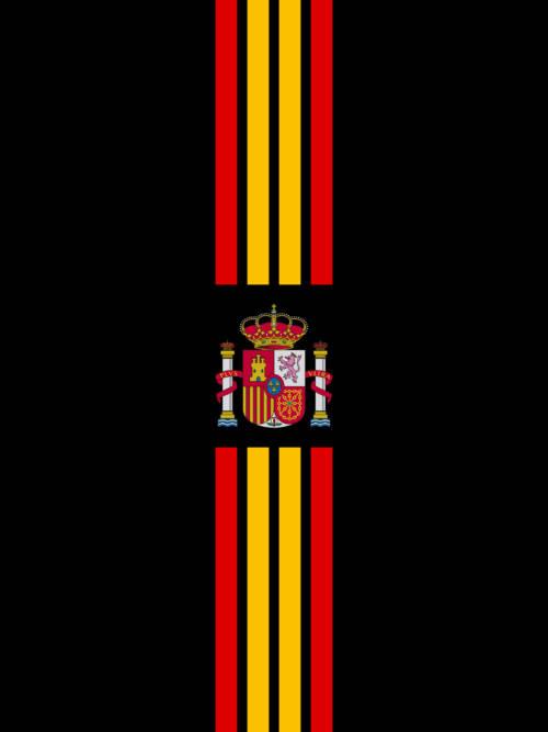 Papel de parede de Escudo Espanhol