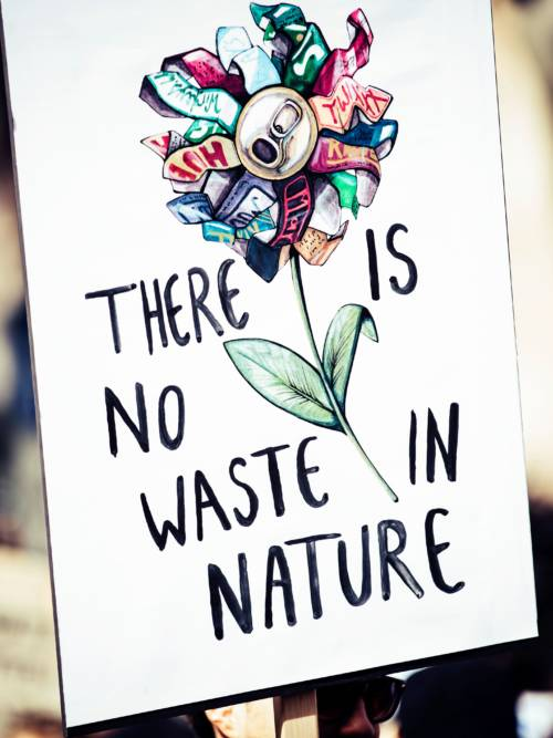 There is no waste in nature wallpaper