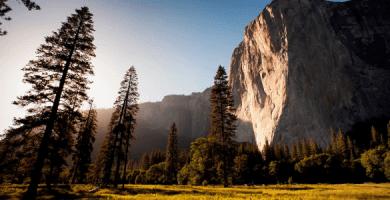 Fonds d'écran nature